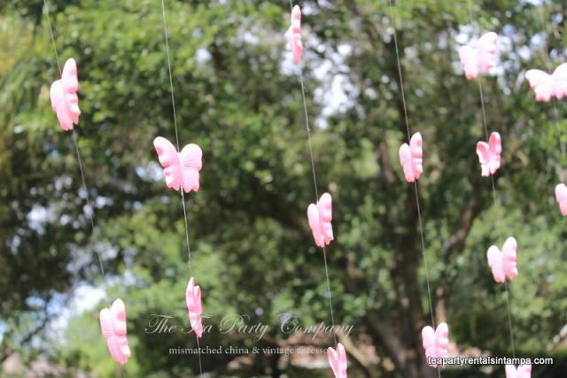 foamy pink butterflies backdrop