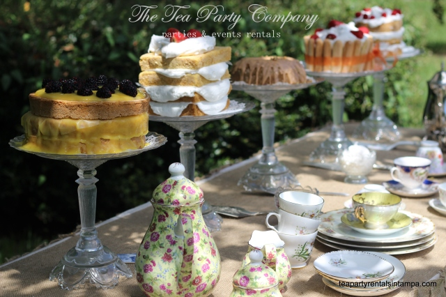 Afternoon Garden Tea Party (2)